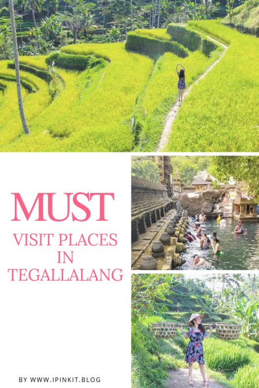 Must Visit Places in Tegallalang in Bali, Indonesia