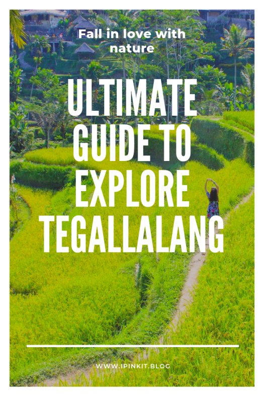 Ultimate guide to explore Tegallalang